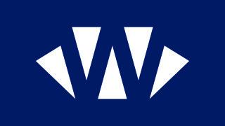 logo wiseeuropa negatyw