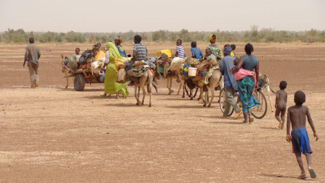 migrants of Africa